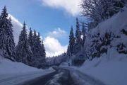 Virility road