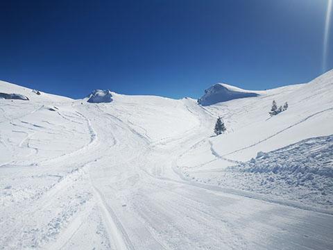 Snowmobile Muntele Mic2