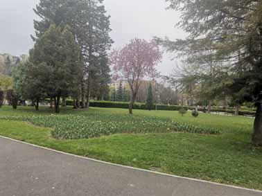Parcul Titulescu