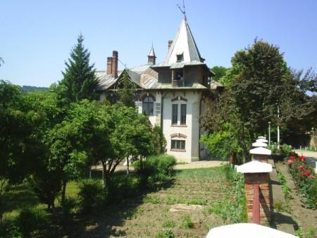 Castelul Vladoianu