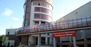 Ion Borcea Museum