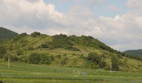 Moldovenești Fortress