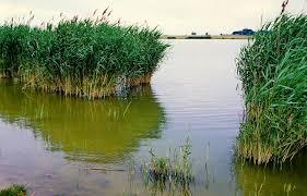Agigea Lake