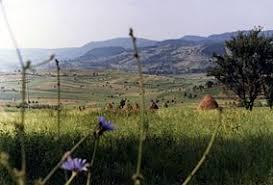 Cornu Nedeii - Ciungii Balasinii