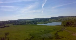 Braesti-Popeni fishing pond