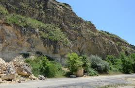 Cernavoda fossil site