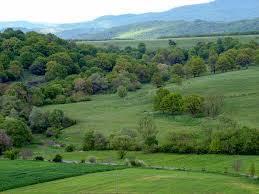 Firtus Hill