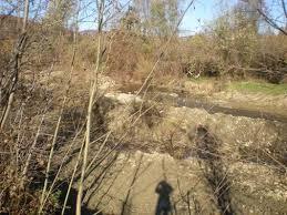 Tuful de la Valea Uzului