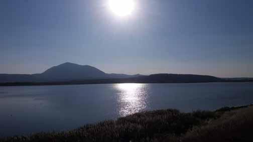Complexul piscicol Dumbravita