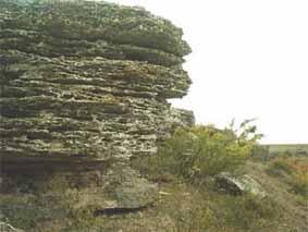 Movila Banului fossil site