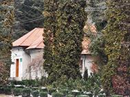 Mihailesti-Muscel dendrological park