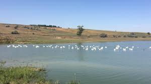 Negreni lake