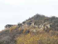 Limestone bushes from Bobalna Valley