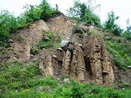 The Purcareni Fossil Site