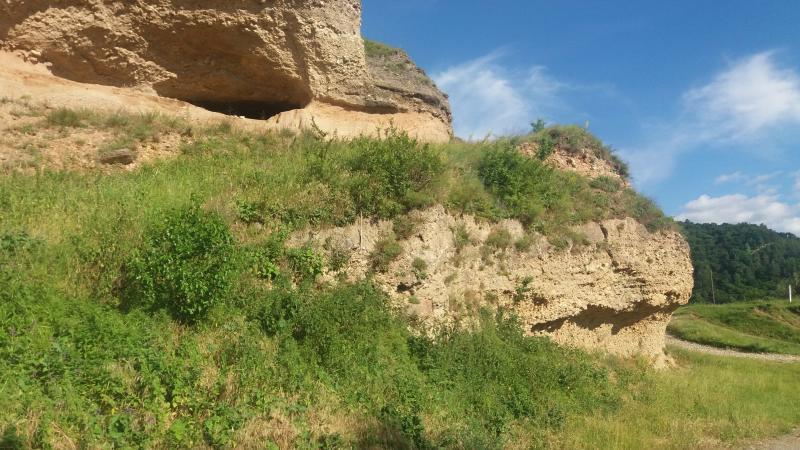 Calcarele eocene de la Porcesti