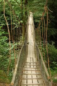 Olt Bridge