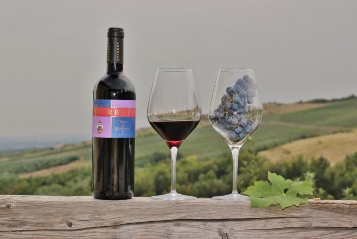 Wine tasting Domeniul Stirbey