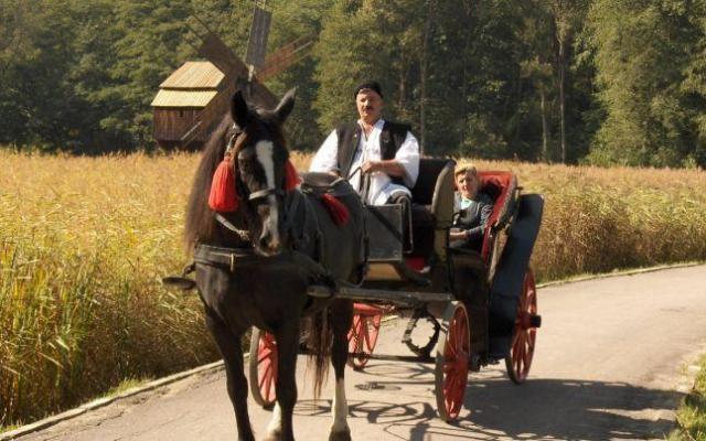 Sleigh, carriage rides