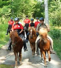 Ivo Riding Ranch, icelandic horses riding