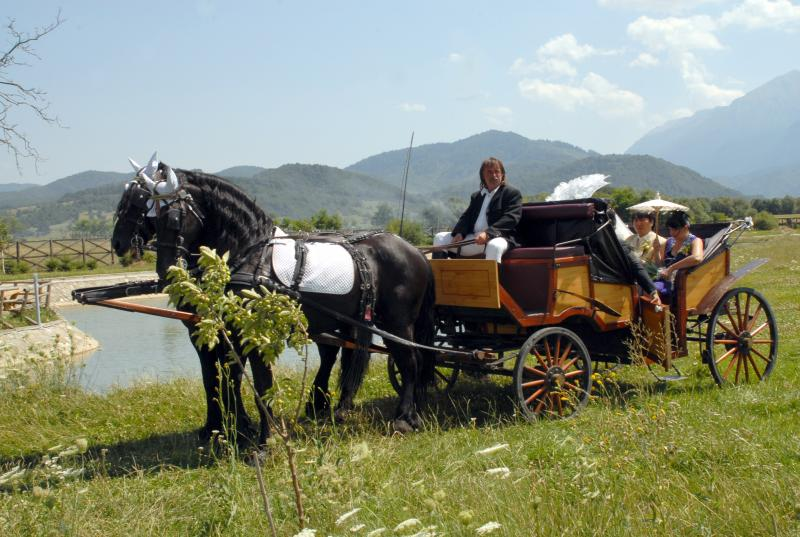 Carriage rides Moieciu