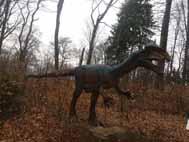 Dinoparc- The dinosaurs parc Rasnov