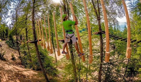 Tree Park Adventure Fundata