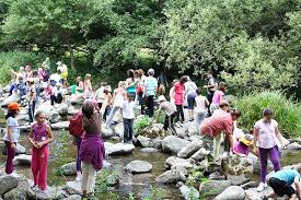 Children trips organisers