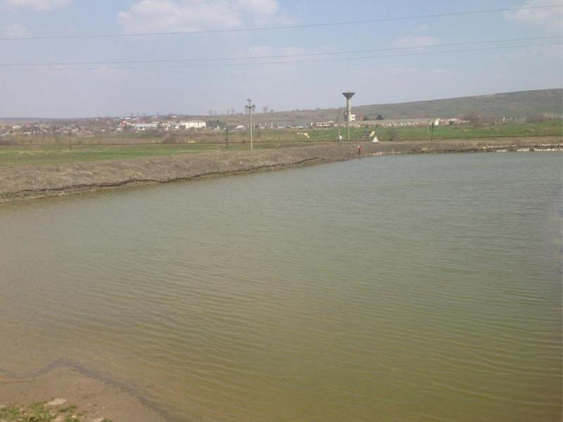Balta Lacul Trusești