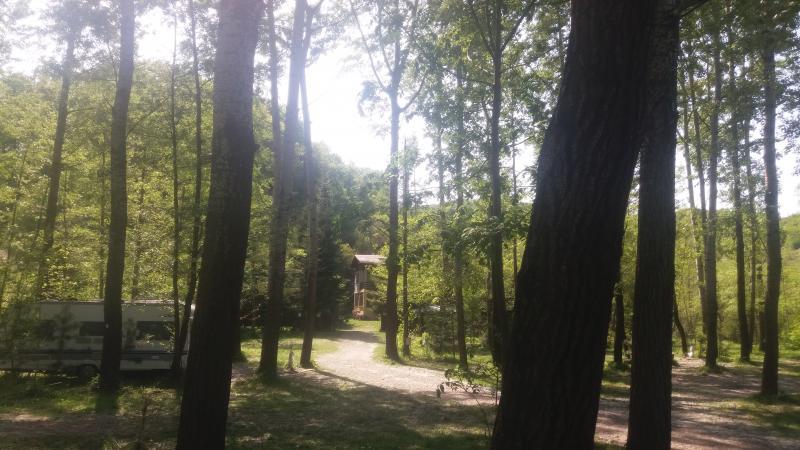 Camping Cotofenesti