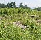 Cetatea Dobelor