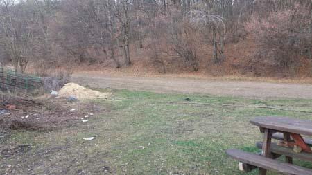 Camp Lac Micesti