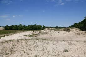 Cazasu Dunes