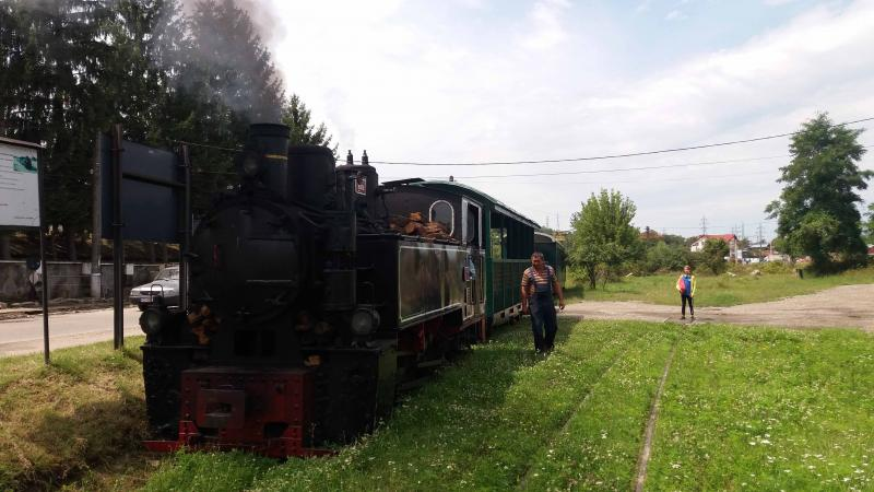 Litle Train Lechinta Tg Mures