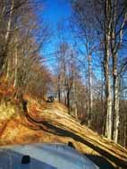 Road Tarnita