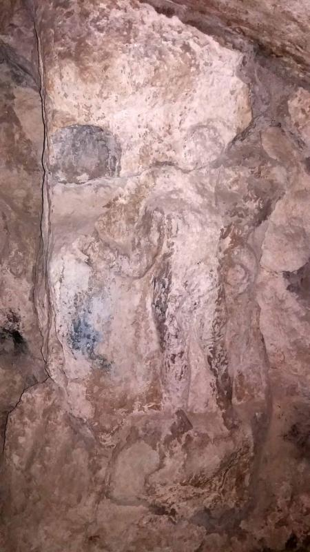 Skin of lion Nemea